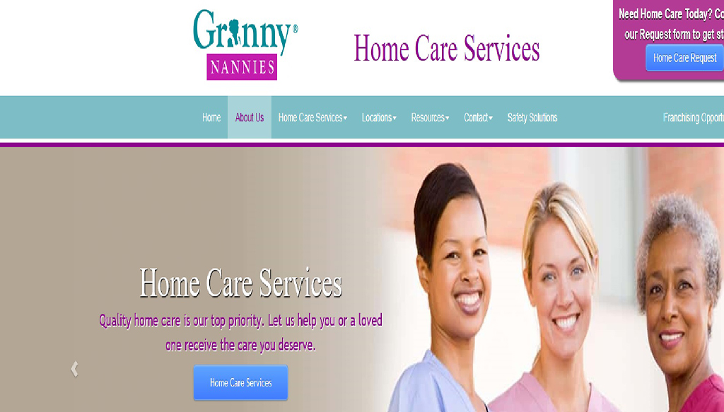 Granny Nannies SEO Branding Best SEO report